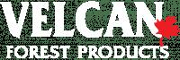 Velcan Logo
